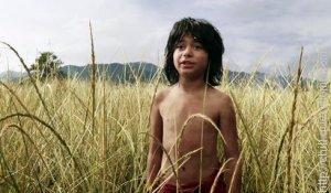 Mowgli The Jungle Book