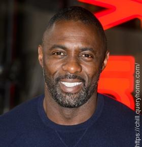 Idris Elba played the role of Nelson Mandela in the movie 'Mandela: Long Walk to Freedom'.