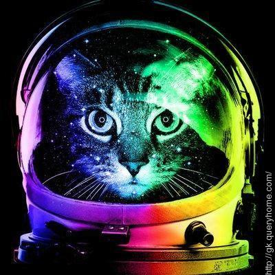 pussy in space