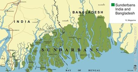 The Ganges Delta or the **Sunderbans Delta** is the largest Delta in the world.