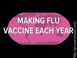 make a flu vaccine if viruses can be different every year