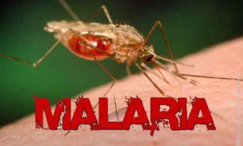 malaria-free country