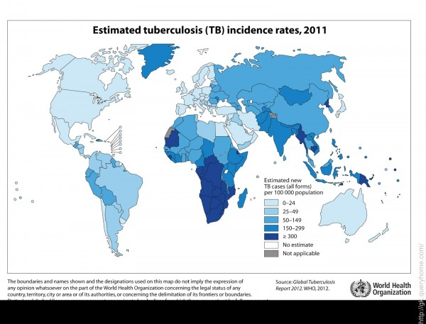 Infection Landscapes: Tuberculosis
