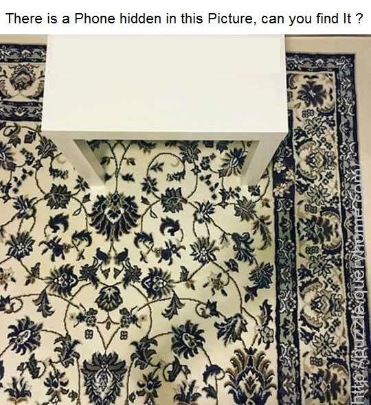 Hidden Phone