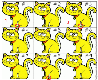 the cat at #8 is lighter than 1 and 3, which makes 1 and 3 completely identical
