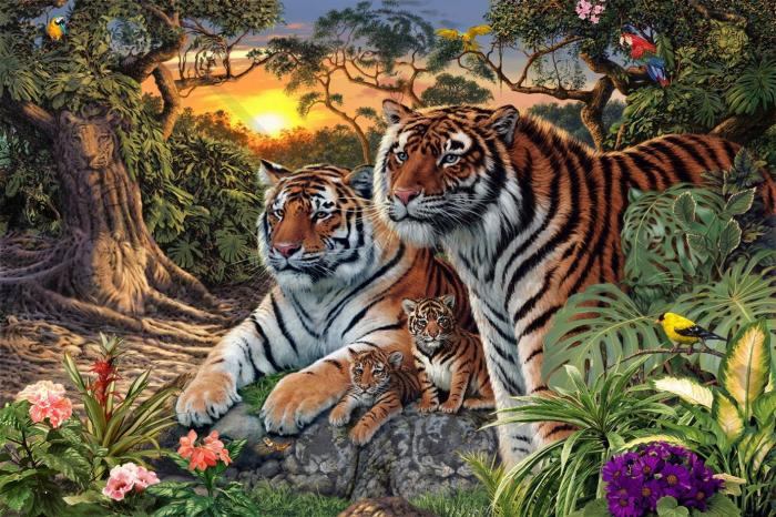 How Many Tigers can you see in this image ?