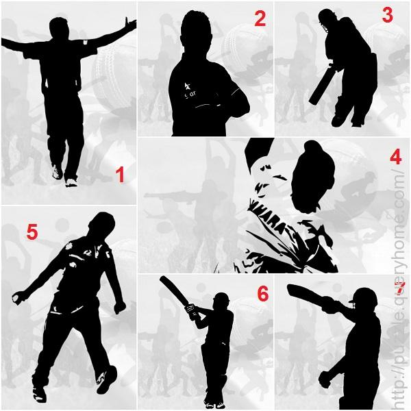 Cricket player puzzles