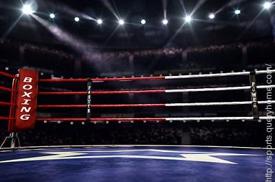 What size is a standard professional boxing ring?
