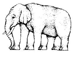 Elehant Puzzles