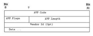 AVP Format